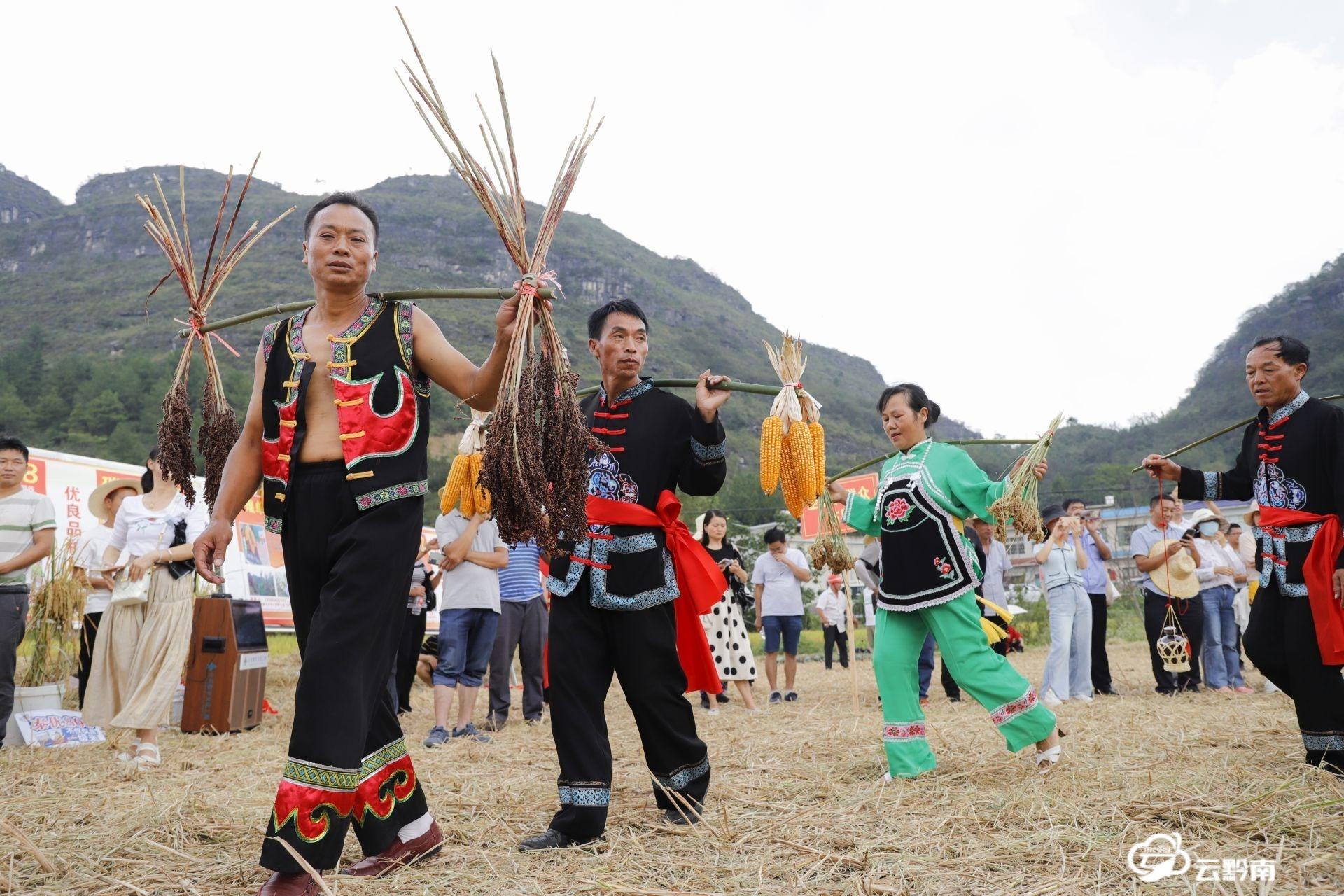 独山县开展水稻机械化收割大展示活动
